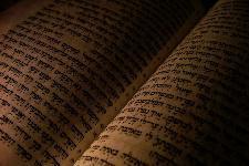 Shabbat Chol HaMoed